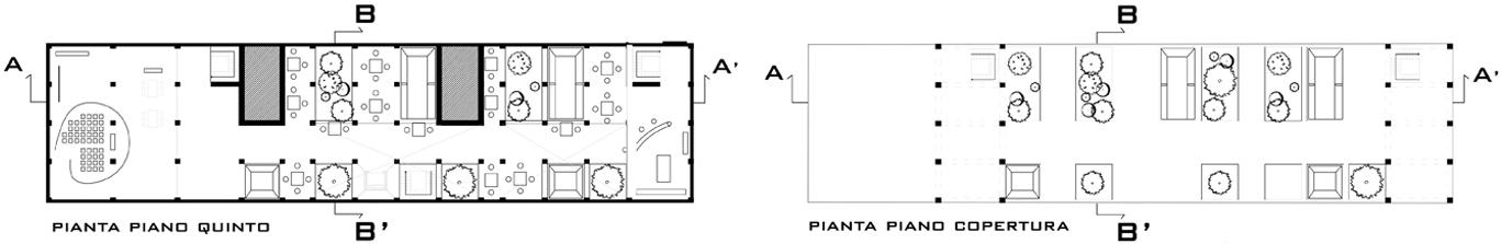 2_polynt_piante